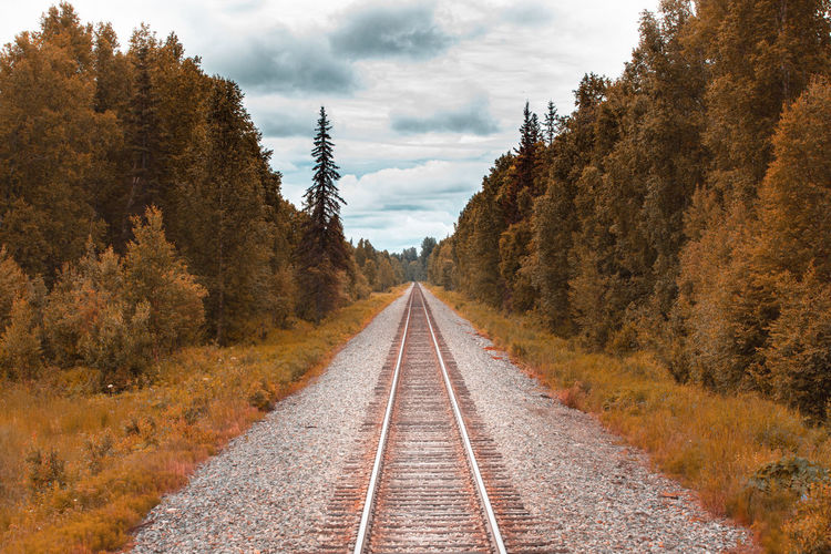 Somewhere in the middle of nowhere. railroad track in ther wilderness of alaska