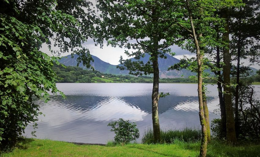 Crummock Water, Cumbria Beauty In Nature Calm Cumbria Fells Idyllic Lake Lakeshore Landscape Mountains Nature Tranquil Scene Tranquility Water