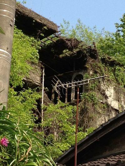 別角度 廃墟 Ruins Kyoto, Japan