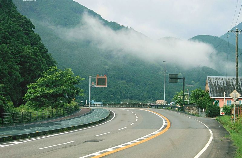 Road Tree Transportation Plant Fog Sign The Way Forward Symbol Direction Day Road Marking Mountain Sky No People