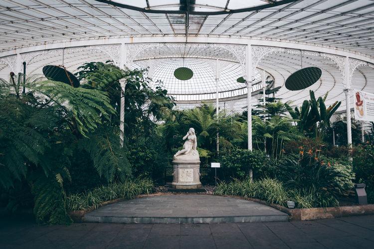 Statue against plants in garden
