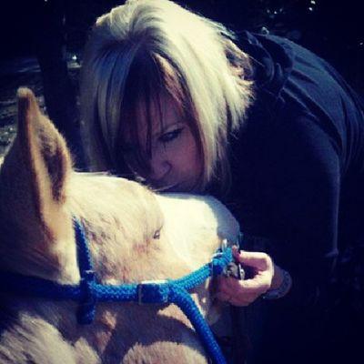 Me Selfie Horses Palomino Paint