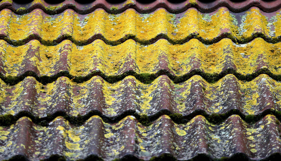 Roof Day Full Frame Nature No People Pattern Rooftop View  Textured  Tiling Tiling Art