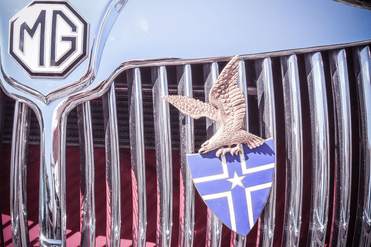 Classic Cars MG  Mg Detail Vintage Car Show Vintage Car Model Animal Representation Animal Themes Architecture Blue Close-up Day Flag Low Angle View Mammal No People One Animal Outdoors Patriotism Vintage MG