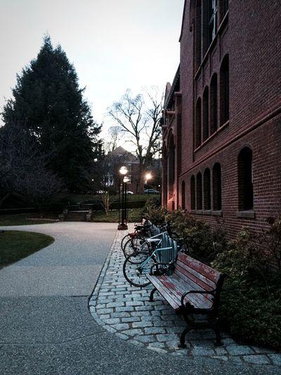 Providence Walkway Brownuniversity College Urban Landscape EyeEm Best Shots TheWeekOnEyeEM City Life Eyemphotography Bicycles