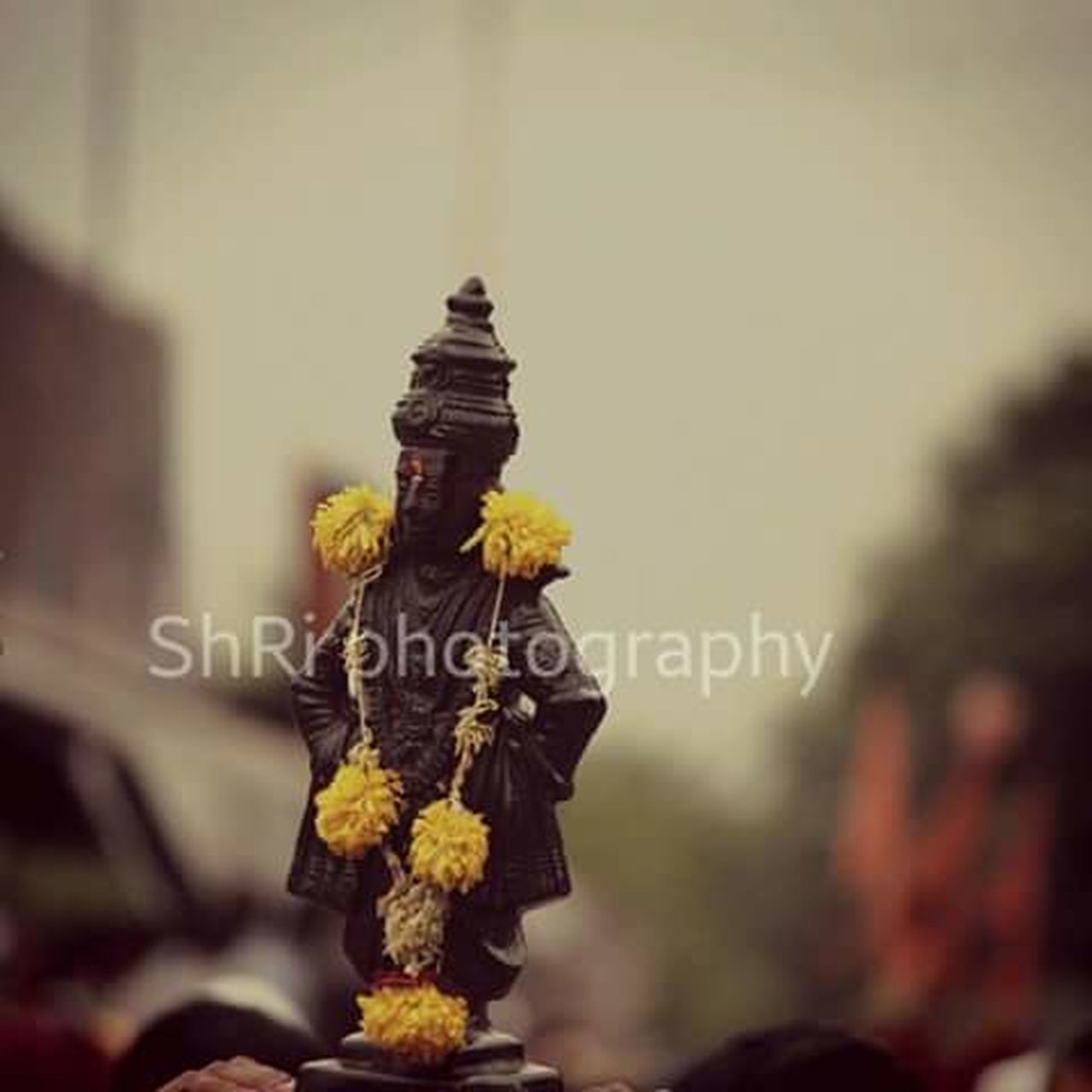 religion, spirituality, crown, ceremony, celebration, no people, statue, day, flower, outdoors, close-up