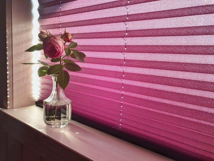 Pink flower vase on table by window