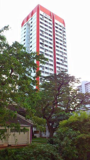 Kreta Ayer Road housing Snapseed Landmarke  Sonyxperiaphotography Singaporestreetphotography Smartphonephotography Architecturephotography Mobilephotography