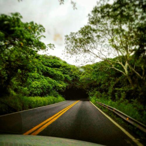 Capturing Freedom Cueva Verde Naturaleza Nature