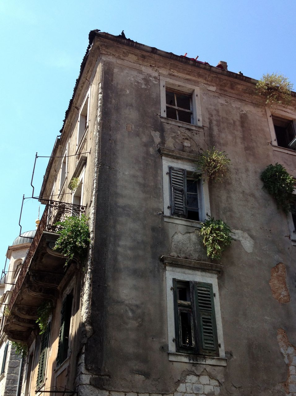 architecture, building exterior, window, built structure, building, low angle view, no people, outdoors, plant, day, residential building, sky, tree, nature
