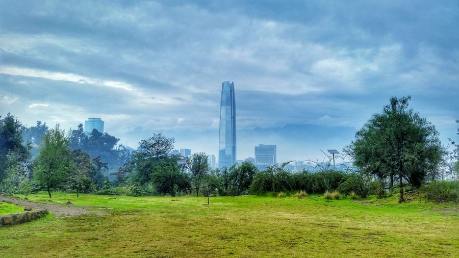 Arquitectura v/s naturaleza Snapspeed Santiago De Chile Santiagoverde Rayning Day