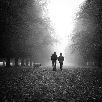 Alley Bw Friend Frienship Light Mist Nostalgia Togetherness Walk