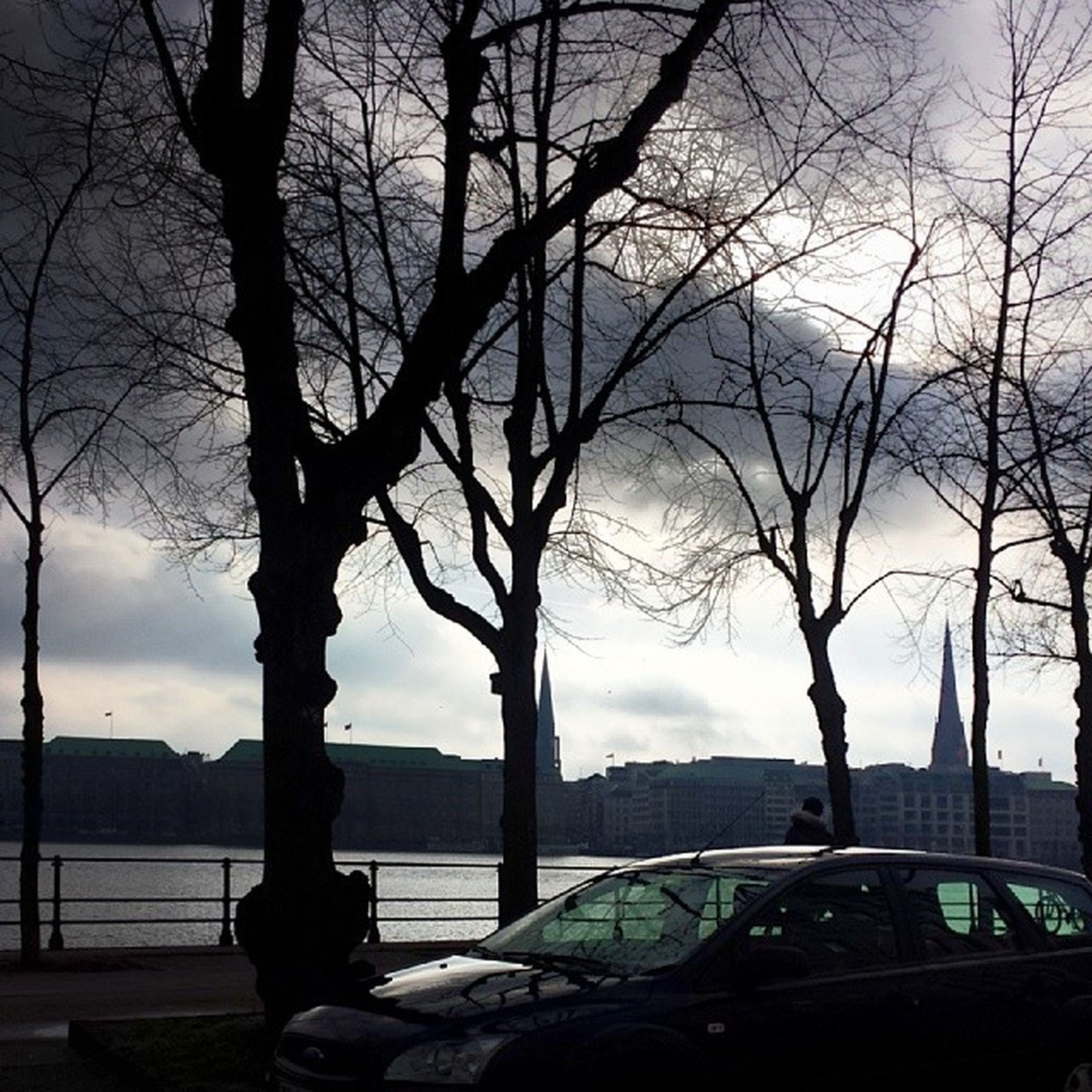 tree, sky, bare tree, railing, built structure, city, architecture, silhouette, branch, building exterior, transportation, cloud - sky, river, water, bridge - man made structure, land vehicle, cloud, nature