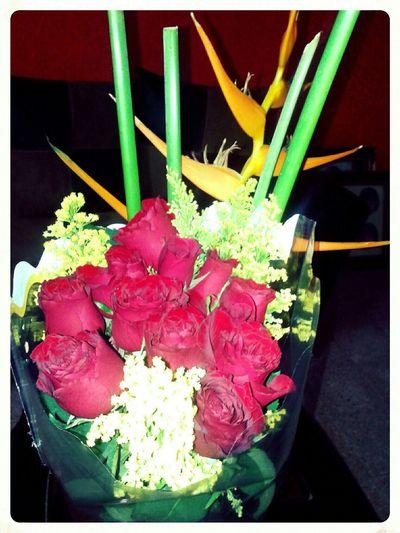 Rosas.!! Paisaje Natural Flores Y Más Flores Flores Nature_collection Naturaleza Natural Beauty Rosas <3 Flowers Spring Flowers Springtime