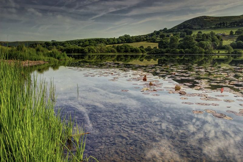 Loweswater Wet