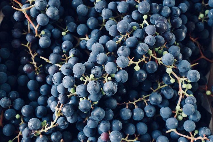 Isabella grape