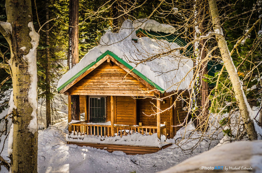 I must say that snow-covered wood cabins look very cool. Architecture Beauty In Nature Built Structure Cabin Cold Temperature Day Eaves Forest Forest Photography Forestwalk House Nature No People Outdoors Roof Scenic Scenics Snow Tree Trees Winter Wood - Material Wood Cabin Woods