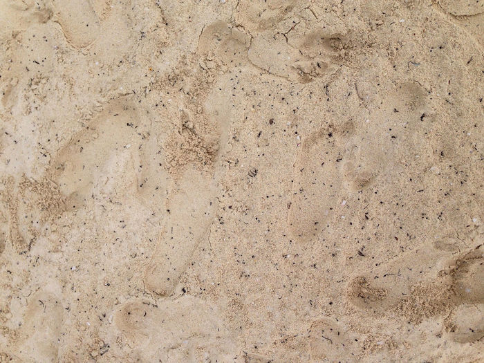 Backgrounds Textured  Pattern Full Frame Beige Solid Gray Close-up Wall - Building Feature No People Stone Material Built Structure Architecture Old Material Abstract Rough Stone - Object Textured Effect Nature Surface Level Concrete Abstract Backgrounds Sand