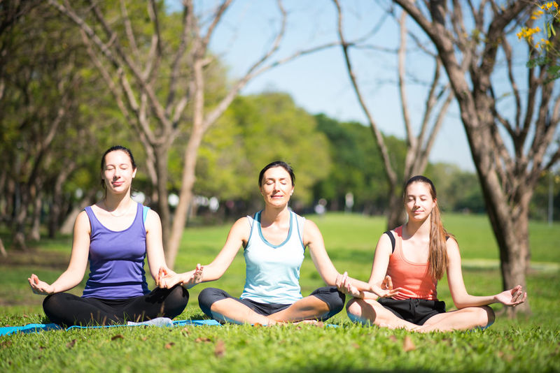 Balance Beauty In Nature Cross-legged Exercising Grass Group Of People Healthy Lifestyle Lifestyles Lotus Position Meditating Outdoors Real People Relaxation Relaxation Exercise Sitting Smiling Spirituality Sports Clothing Tranquil Scene Tree Wellbeing Women Yoga Yoga Class Zen-like
