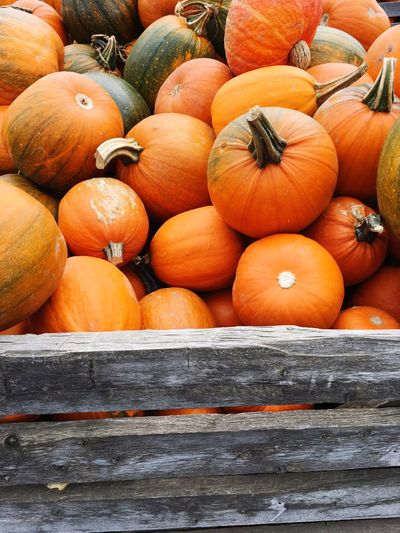 Close-up of pumpkins in container at market