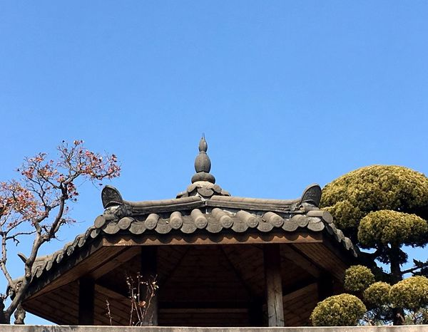 Korean Style Korean Culture Korean Traditional Architecture Korean Traditional House Low Angle View Clear Sky Copy Space Day Architecture Statue Outdoors No People Built Structure Building Exterior Blue Tree Spirituality Travel Destinations Sculpture Roof Nature Sky EyeEmNewHere