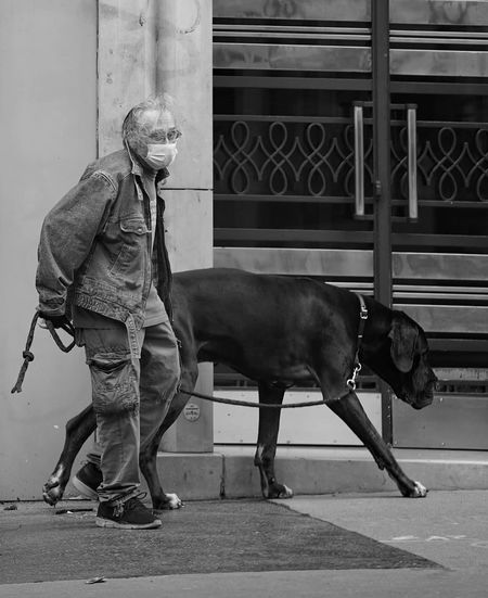 Man with dog standing on street