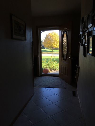 Fall Colors November In Wisconsin Looking Out My Front Door