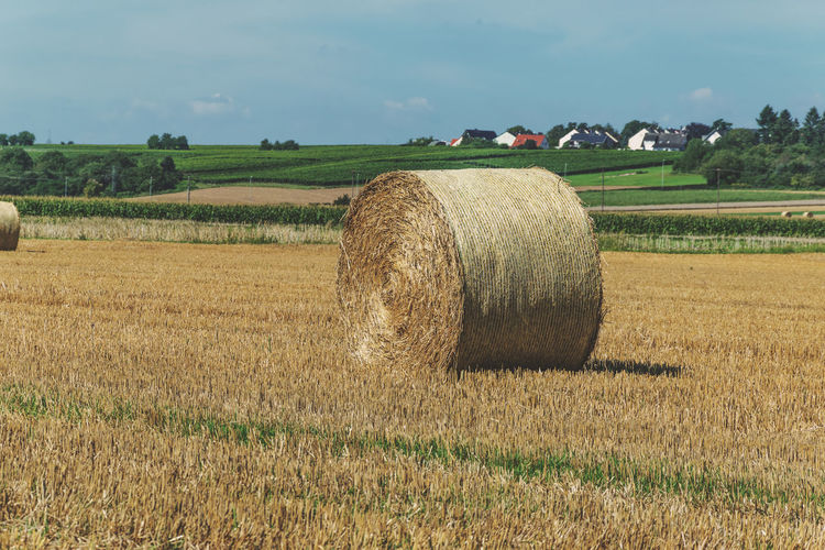 Agriculture Bale  Beauty In Nature Cereal Plant Crop  Cultivated Cultivated Land Farm Farmland Field Grass Growth Hay Horizon Over Land Landscape Nature No People Outdoors Rolled Up Rural Scene Scenics Sky Tranquil Scene Tranquility Wheat