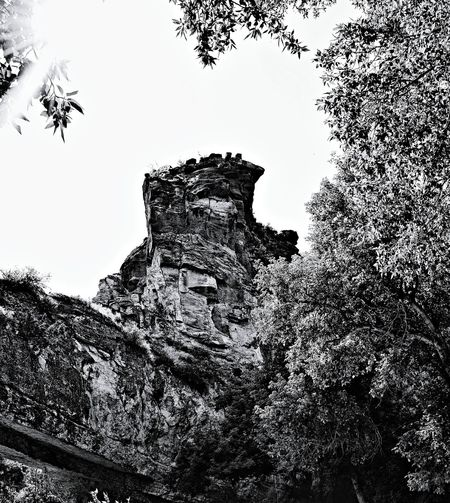 Towering above the trees Natural Bridge North Of Douglas Wyoming Rock Formation At End Of Bridge United States Abstract Photo
