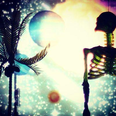 Space Sceleton