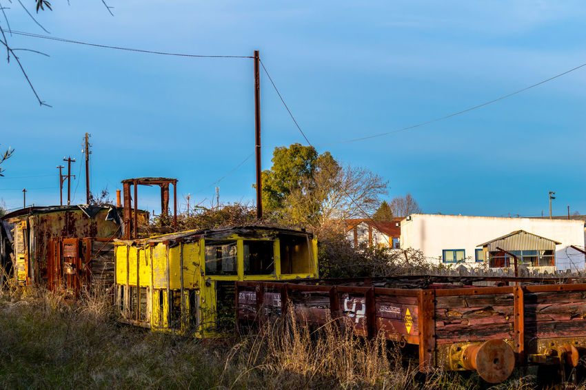 Abandoned Places Abandoned Architecture Building Exterior Built Structure Cable Day No People Outdoors Sky Train Train - Vehicle Tree