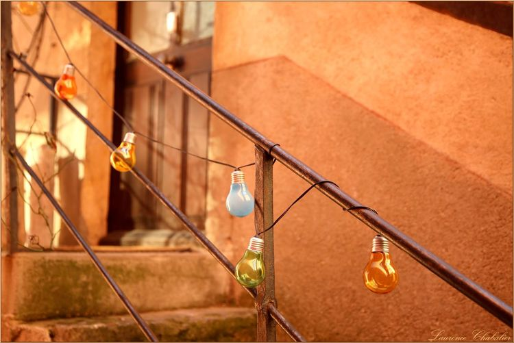 Close-up of electric bulb decoration on railing