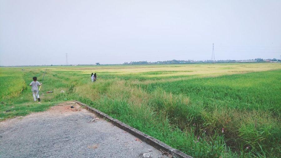 Working Rural