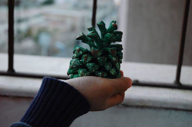 Cropped Hand Holding Pine Cone By Railing