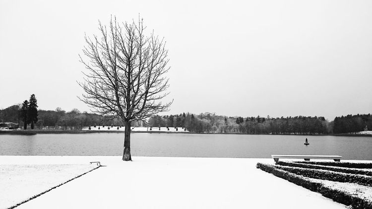 Coming back from a lovely singing weekend in Brandenburg Blackandwhite Black And White Snow No People Tree TreePorn Quiet Moments Lake View Lake Relaxing First_snow EyeEm Nature Lover Lakeside Park A Walk In The Park