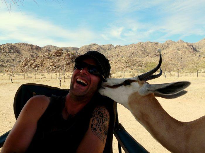 Antelope kissing man