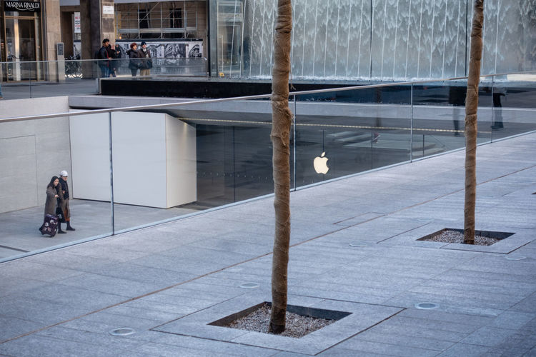 Apple trees Architecture Building Exterior City Real People Outdoors Glass - Material Lifestyles Walking Apple Sir Norman Foster Apple Store Apple Store Milano