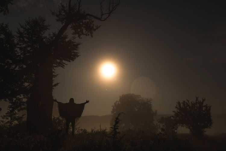 Tree Plant Sky Nature Field Silhouette Beauty In Nature Livestock Domestic Land Outdoors Moon Moonlight Moon Light Saman Night Nightphotography Night Lights Night Photography