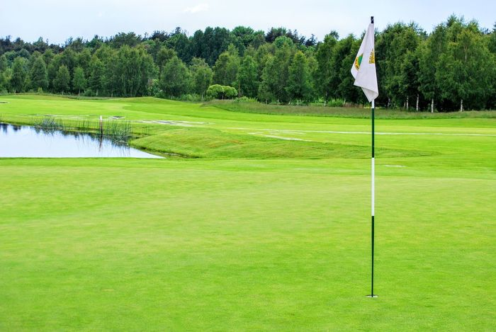 Golf Golf Course Golf Flag Flag Tree Green - Golf Course Putting Green Sport Grass Nature Green Color Day Leisure Activity Outdoors No People Golf Club Beauty In Nature Golfer Sky The Great Outdoors - 2018 EyeEm Awards
