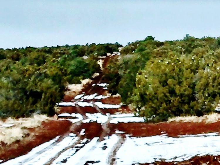 Taking Photos Nature Outdoors Show Low Az Snow ❄ Snow Minimal