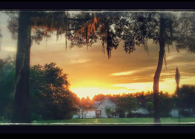 Sunset Sun Reflections On Trees Quaint House Nestled Amongst The Backdroo Os Sunset Collection Beautiful Sunset Beautiful Nature Open Edit The Week On EyeEm