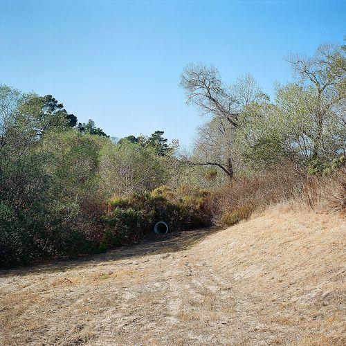 California Drought Medium Format Ishootfilm Lubitel 166+ Real Film Taking Photos