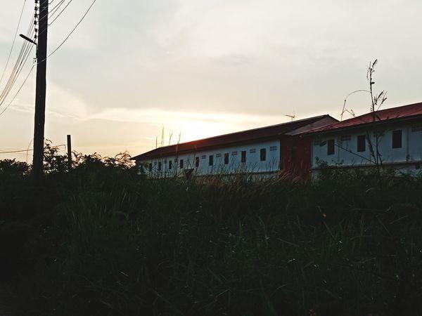 the building Sunset Sky Grass Cloud - Sky