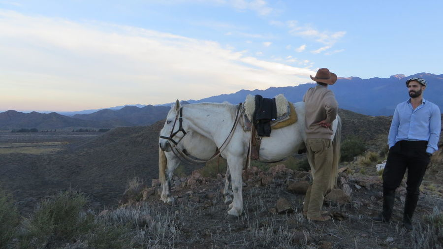 cowboys Montains    Cavalgada Sunset_collection Nature Mendoza Argentina Cowboys Working Mountain Men Farmer Rural Scene Agriculture Occupation Togetherness Field Farm Worker Farm Animal