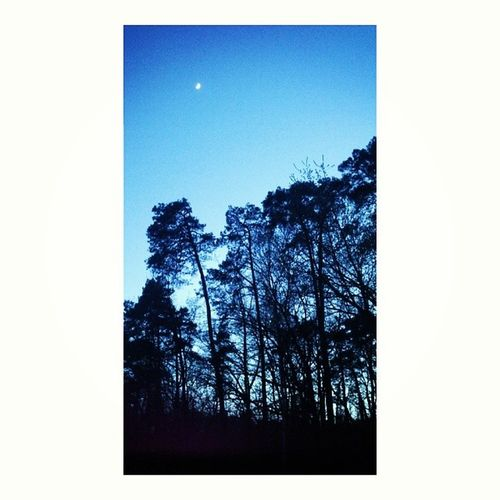 Konstancin Go To  Hospital my boyfriend dark pretty night forest dream cute instaphoto instagood beauty