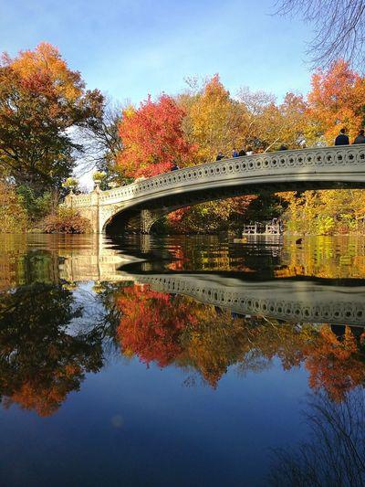 Arch bridge over river against sky during autumn