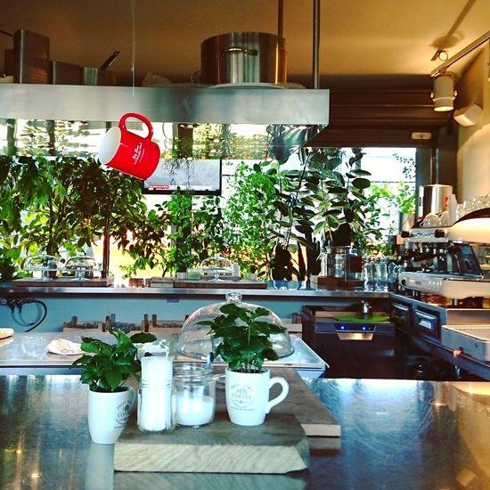 Indoors  Hfarm Greenhouse Coffeetime Bar Counter Barista Kitchen Life Kitchen Things