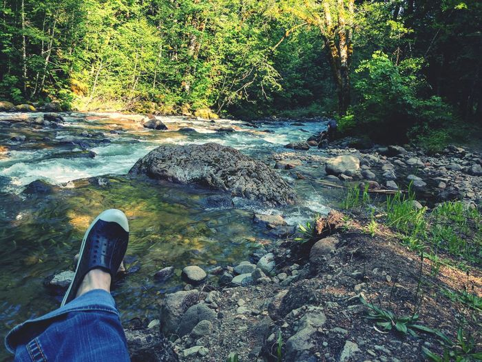 Water Low Section One Person Human Leg Personal Perspective Shoe Day Real People Outdoors Leisure Activity Where My Heart Belongs Favorite Place Tranquil Scene Tranquility EyeEm Nature Lover Sunlight Summertime By The Creek Camping Spot Clear Water Cold Water Mountain Creek Forest Freshness Lost In The Landscape