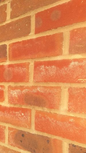 Backgrounds Textured  Full Frame Wall - Building Feature Brick Wall Red Abstract Built Structure Pattern Architecture No People Day Close-up Outdoors Building Exterior