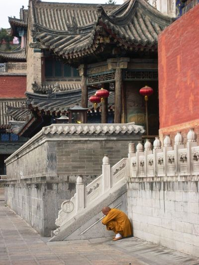 """Meditating Buddhist Monk in Taiyuan Temple 'Lama Temple"""", Wutaishan Shanxi Animal Themes Architecture Buddhist Monk Buddhist Temple Building Exterior Built Structure Day Domestic Animals Mammal Meditating Monk Monk  No People One Animal Outdoors Roof Steps Steps And Staircases Travel Destinations"""